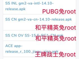 王者荣耀辅助软件_PEAK